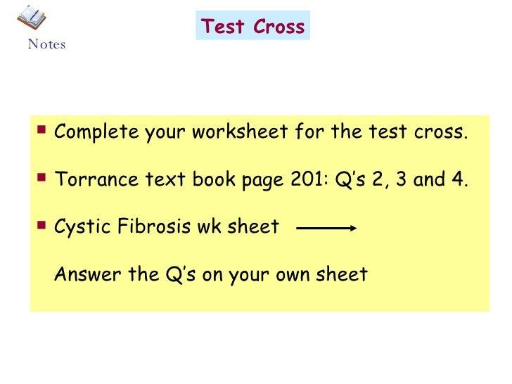 Test Cross Worksheet - Khayav