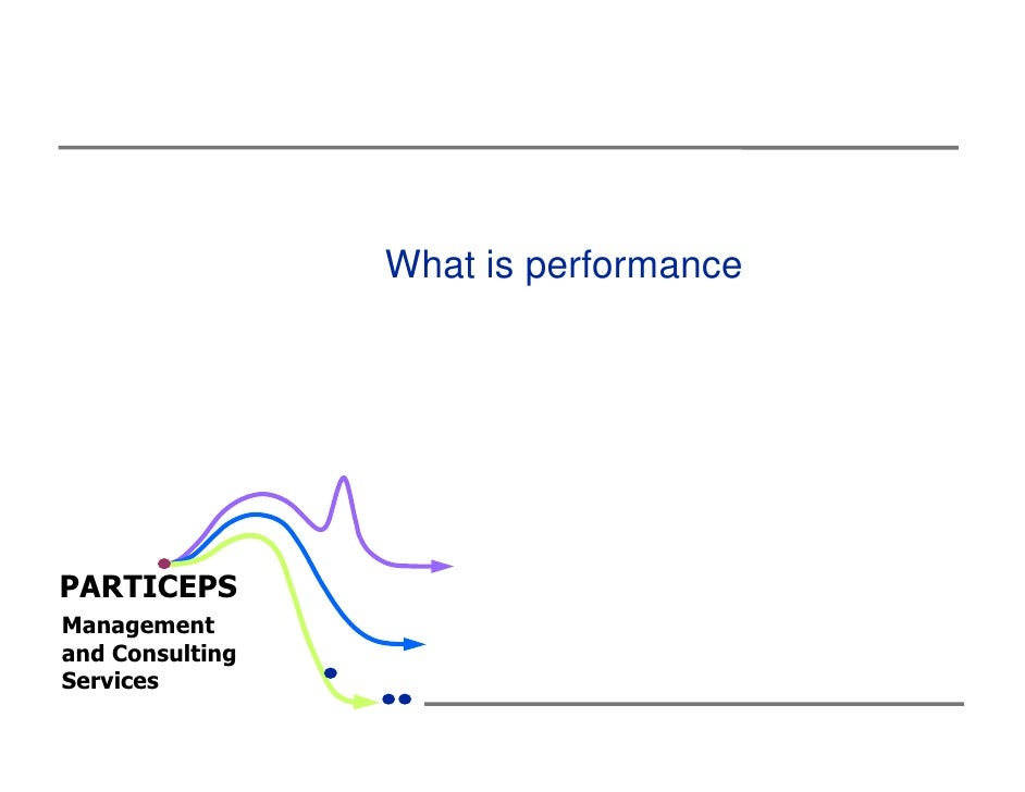 What is performancePARTICEPSManagementand ConsultingServices