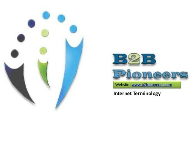 Internet Terminology Website: www.b2bpioneers.com