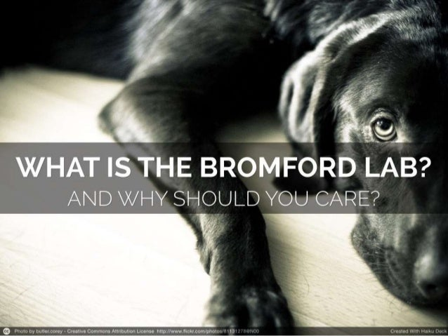 What is the Bromford Innovation Lab? And why should you care?