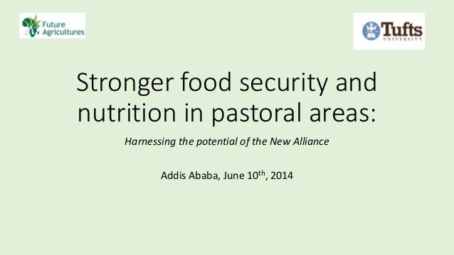 Stronger food security and nutrition in pastoral areas: Harnessing the potential of the New Alliance Addis Ababa, June 10t...