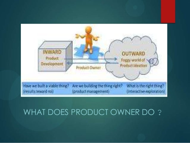 WHAT DOES PRODUCT OWNER DO ?