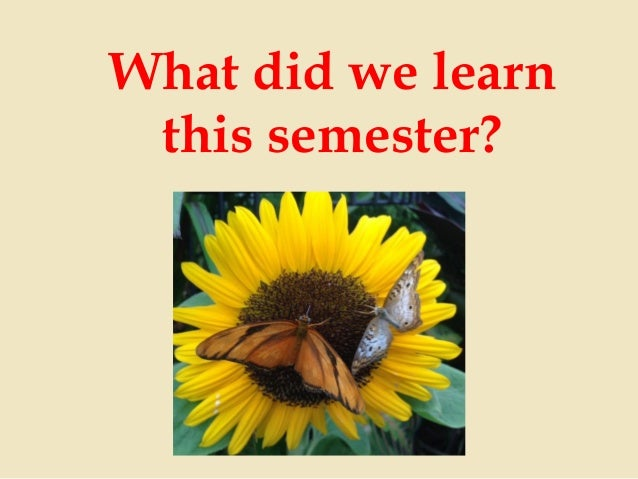 What did we learn this semester?