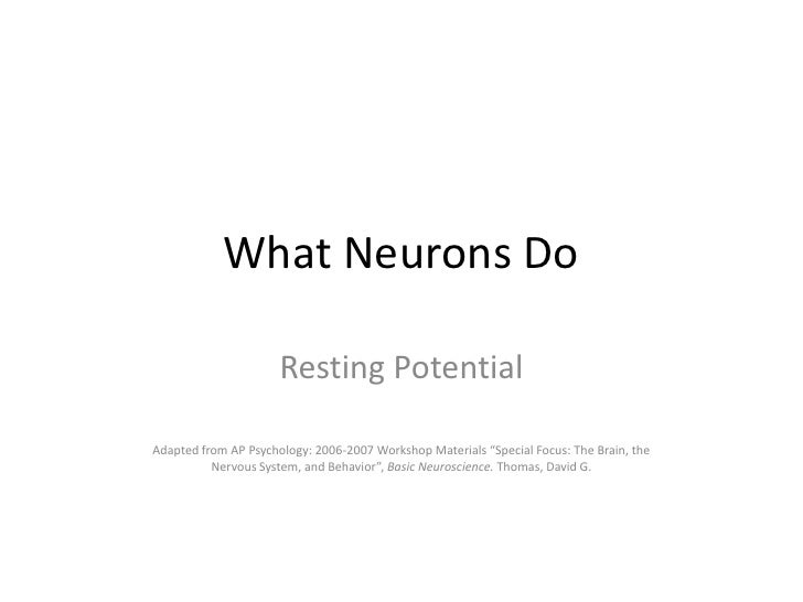 """What Neurons Do<br />Resting Potential<br />Adapted from AP Psychology: 2006-2007 Workshop Materials """"Special Focus: The B..."""