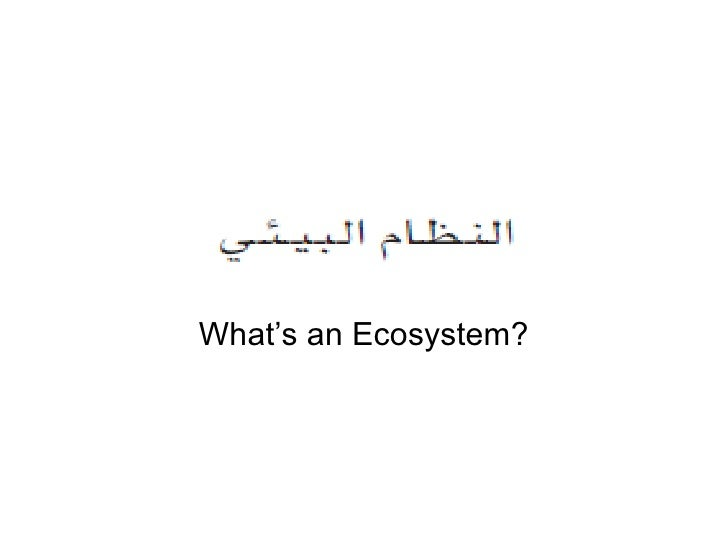 What's an ecosystem in arabic  by redouane boulguid