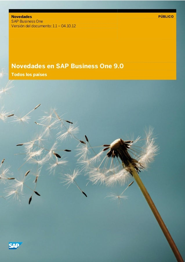 Whats new in SAP Business One 9.0. www.arteroconsultores.com