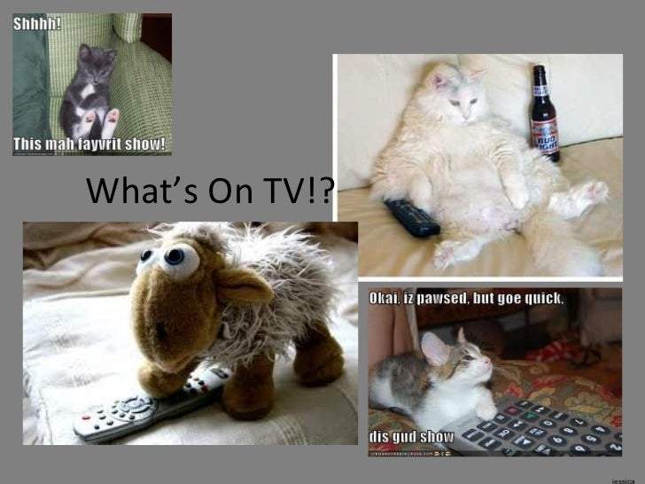What's On TV?