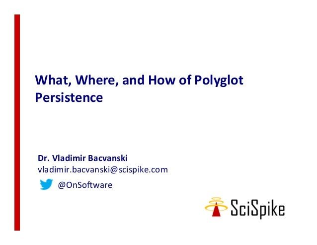 What, Where, and How of Polyglot Persistence
