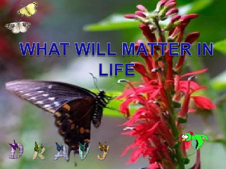WHAT WILL MATTER IN<br />LIFE<br />
