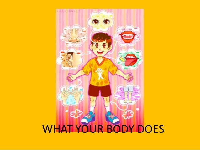 What your body does