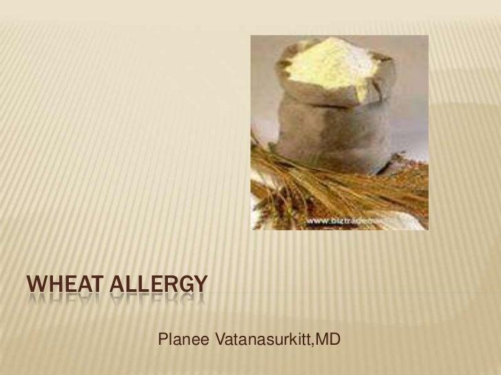 Wheat allergy      <br />PlaneeVatanasurkitt,MD<br />