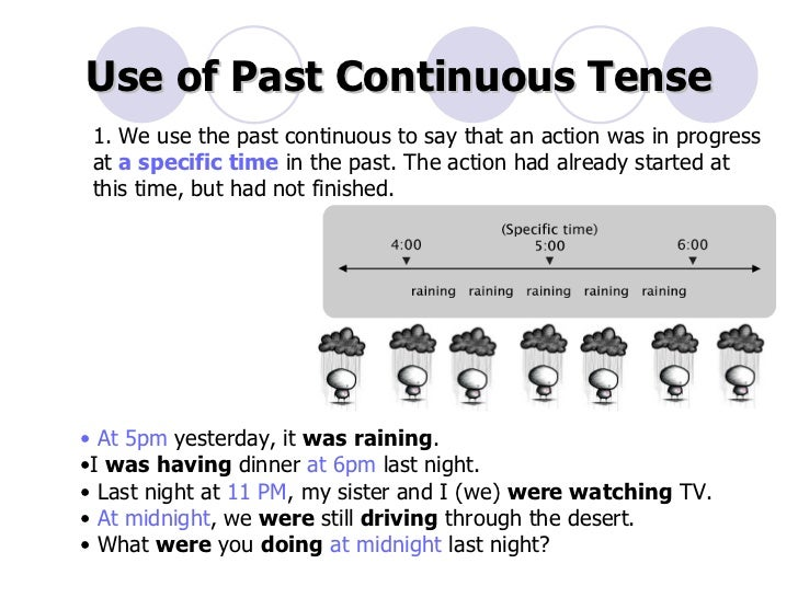 when while past continuous tense past simple