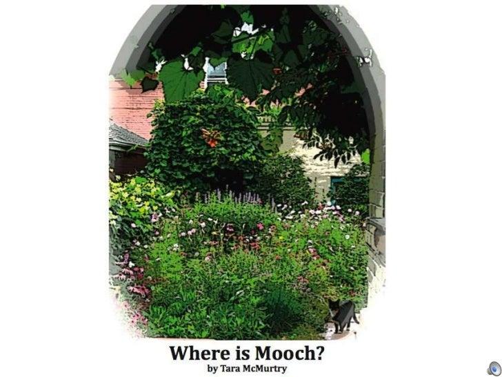 Where is Mooch?