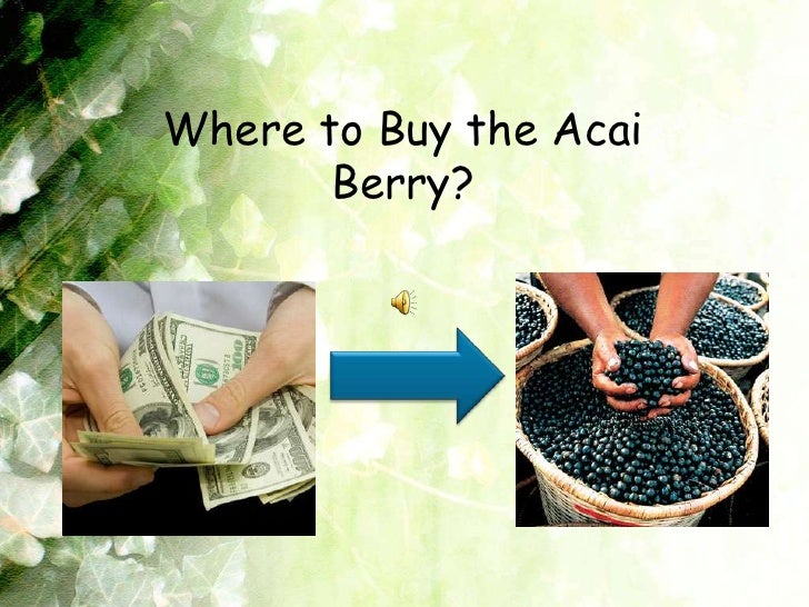 Where to Buy the Acai Berry?<br />
