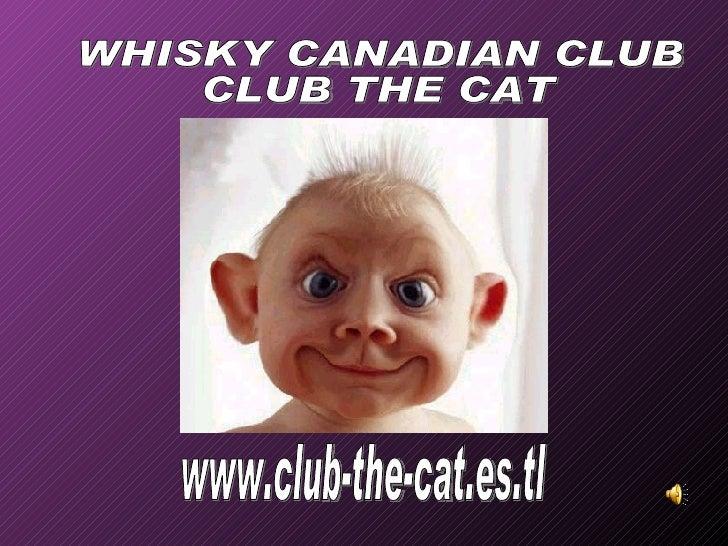 www.club-the-cat.es.tl WHISKY CANADIAN CLUB CLUB THE CAT