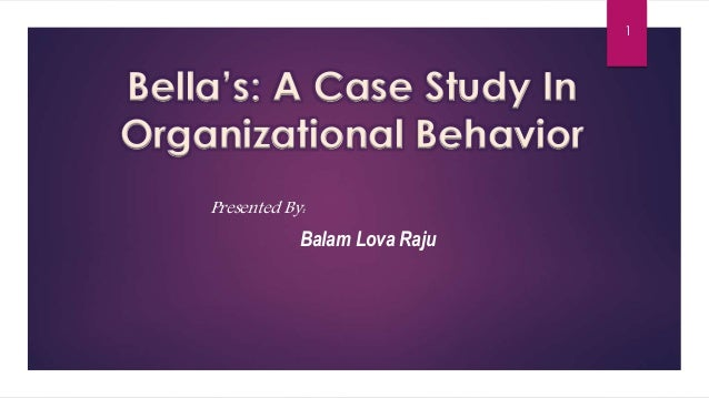 Organizational Behavior 6e - Additional Case Studies