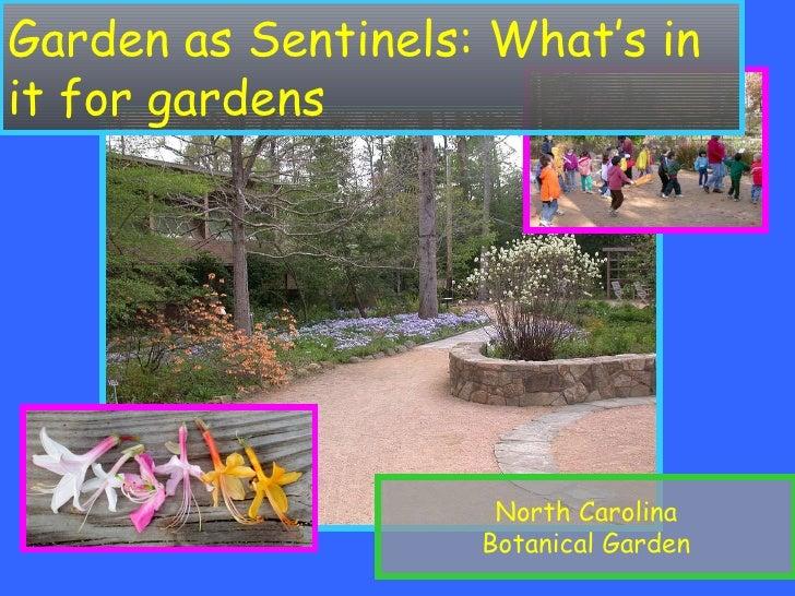 Botanic Gardens as Sentinels of Forest Health White