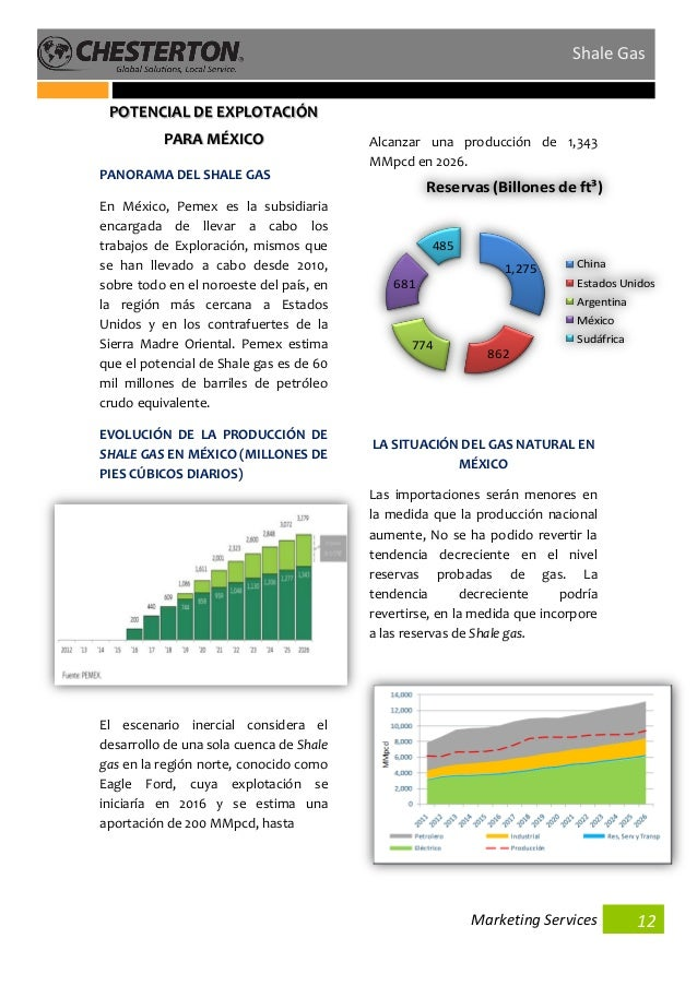 shale gas simulation thesis