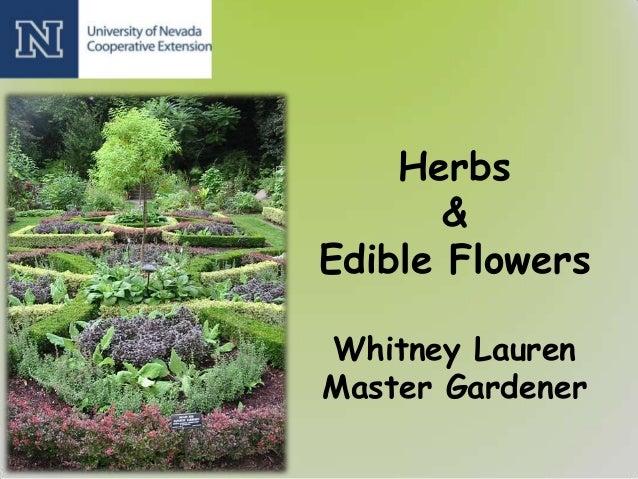 Herbs&Edible FlowersWhitney LaurenMaster Gardener