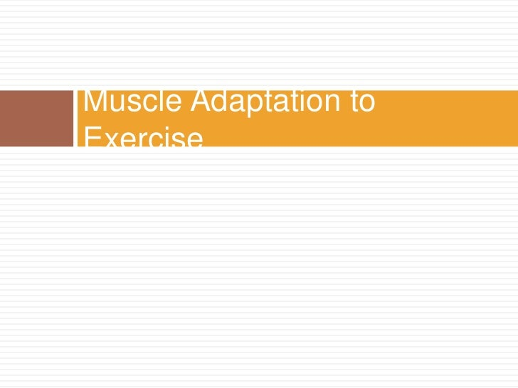 Muscle Adaptation to Exercise<br />