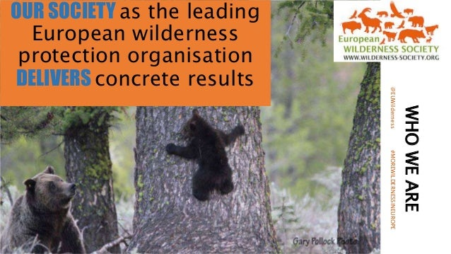WHOWEARE OUR SOCIETY as the leading European wilderness protection organisation DELIVERS concrete results @EUWilderness#MO...