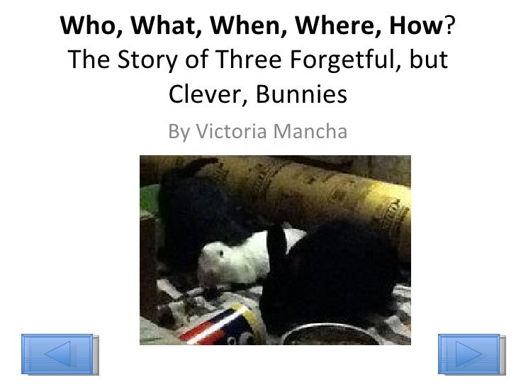 Who, What, When, Where, How ? The Story of Three Forgetful, but Clever, Bunnies By Victoria Mancha