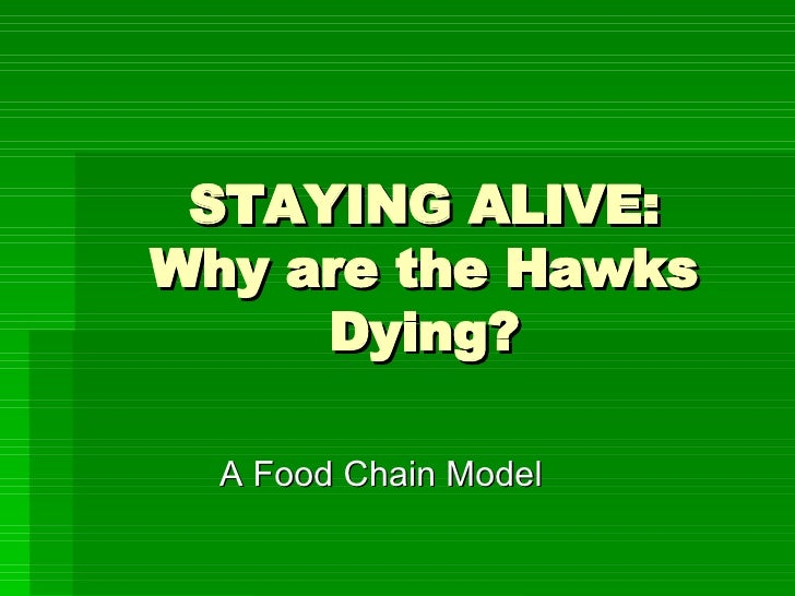 STAYING ALIVE: Why are the Hawks Dying? A Food Chain Model
