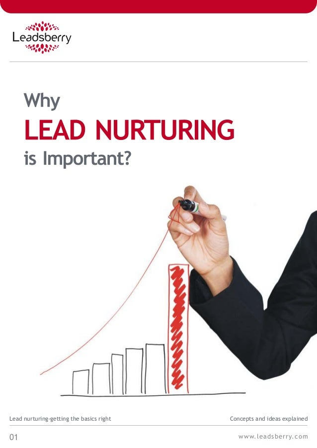 01Lead nurturing-getting the basics right Concepts and ideas explainedwww.leadsberry.com