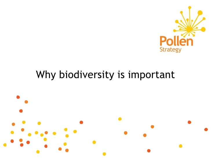 Why biodiversity is important