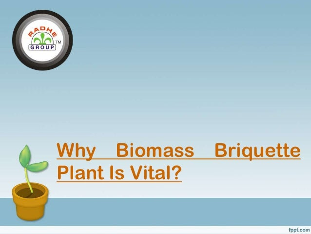Why Biomass Briquette Plant Is Vital?