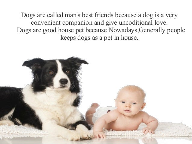 Dogs Are Good House Pet
