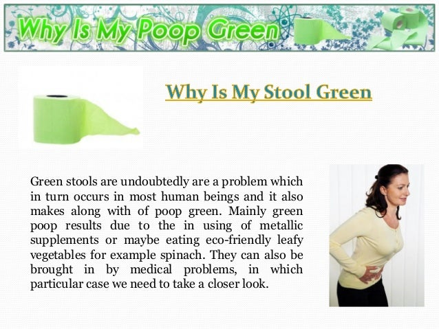 how to get my dog to stop eating her poop