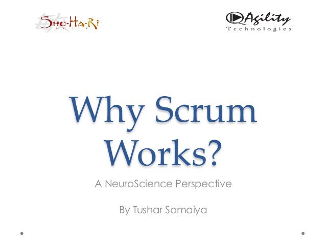 Why scrum works - A NeuroScience Perspective @ Scrum Gathering India 2013