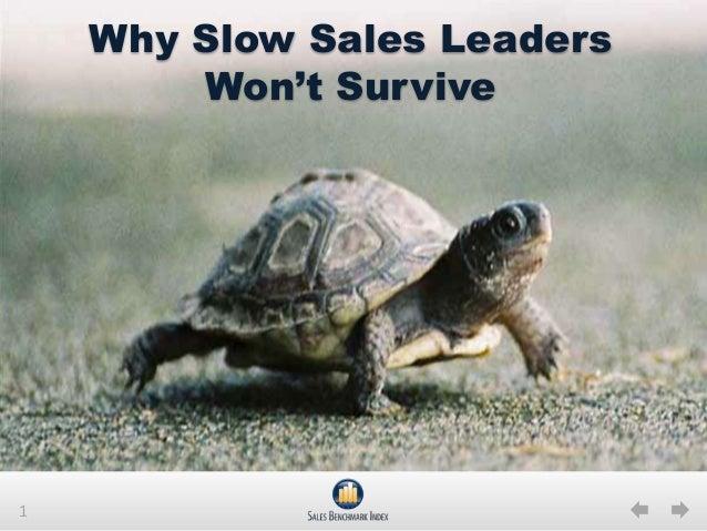 Why Slow Sales Leaders Won't Survive