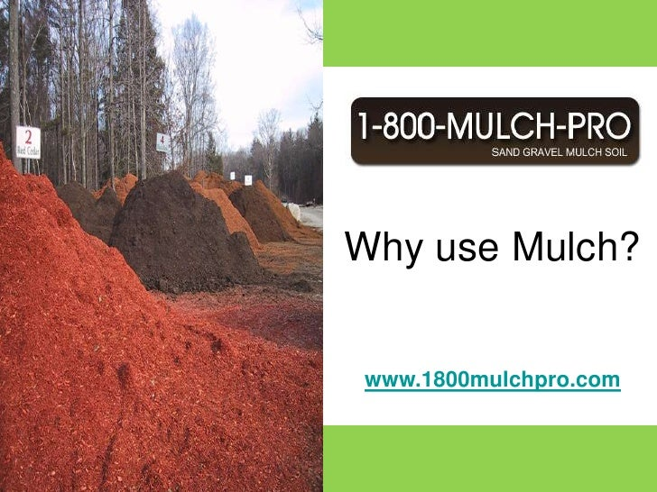 Call 1-800-MULCH-PRO and get connected with a mulch professional that services your local area.  1-800-MULCH-PRO is a netw...