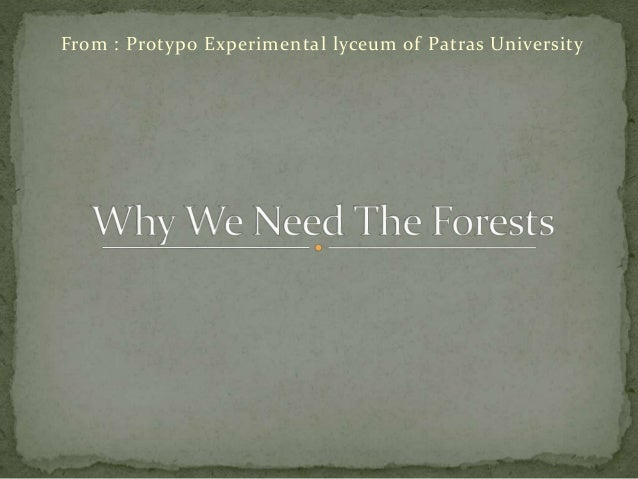 Why we need the forests pitas
