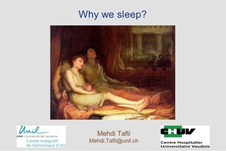Why we sleep?  Mehdi Tafti [email_address]