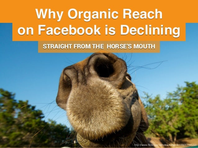 Why Your Organic Reach on Facebook is Declining