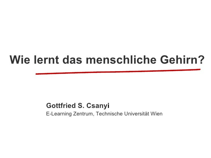 Wie lernt das menschliche Gehirn?   Gottfried S. Csany i   E-Learning Zentrum, Technische Universität Wien