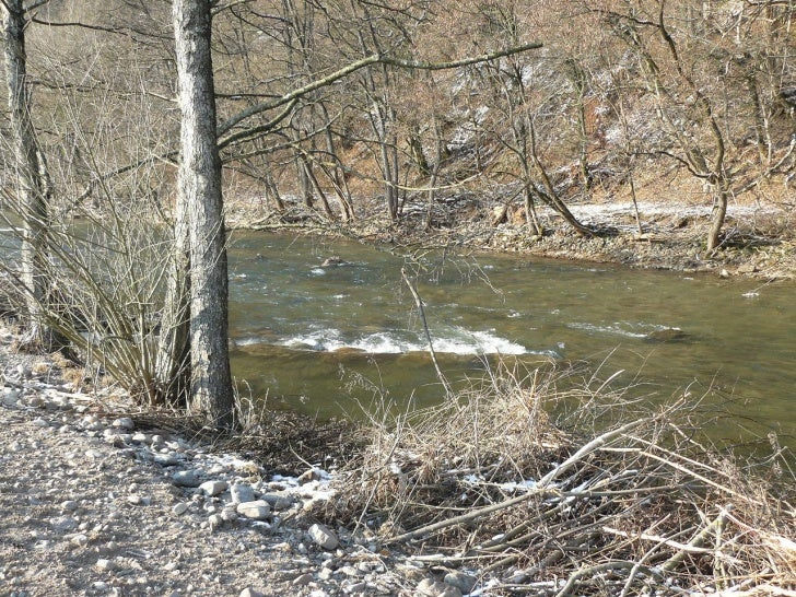 Schwarzwaldfluss Wiese in Maulburg nach dem Hochwasser: Teil 1