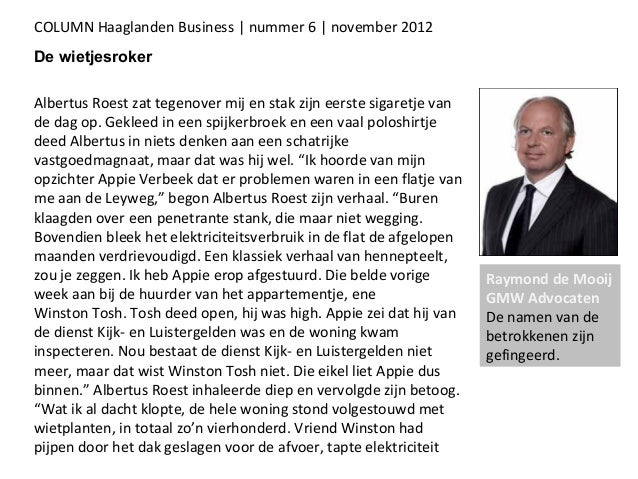 Raymond de Mooij Business Haaglanden November 2012