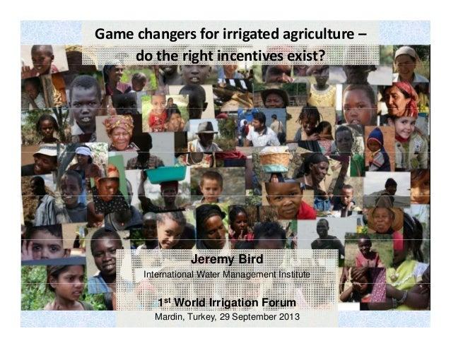 Gamechangersforirrigatedagriculture– dotherightincentivesexist?  Jeremy Bird International Water Management Insti...