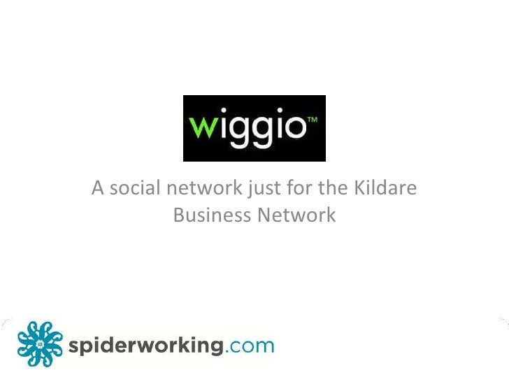 A social network just for the Kildare Business Network<br />