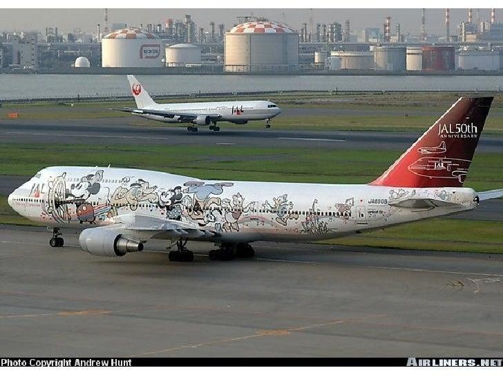 Wild.Aircraft.Paint.Schemes