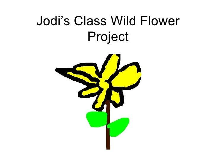 Jodi's Class Wild Flower Project