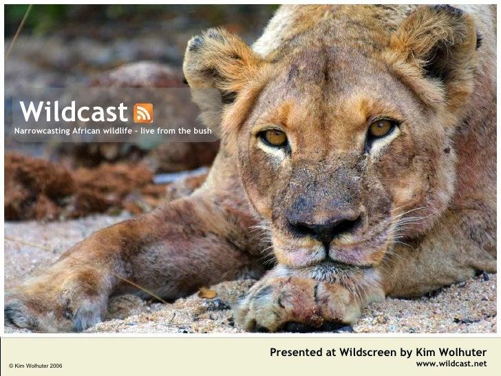 Wildcast Presented at Wildscreen by Kim Wolhuter www.wildcast.net Narrowcasting African wildlife - live from the bush © Ki...