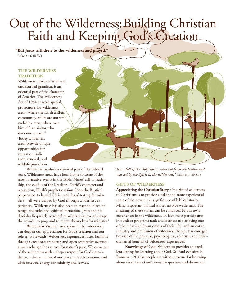 Out of the Wilderness: Building Christian Faith and Keeping God's Creation
