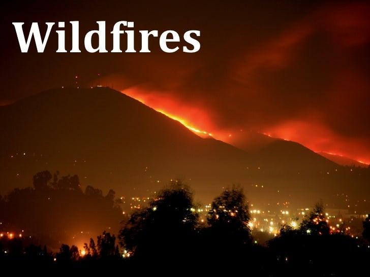 Wildfires - June, 2008