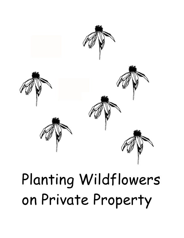 Planting Wildflowerson Private Property