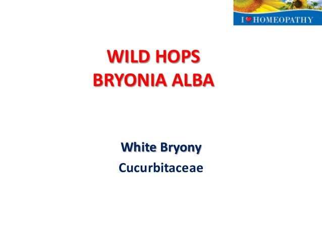 Discover Bryonia